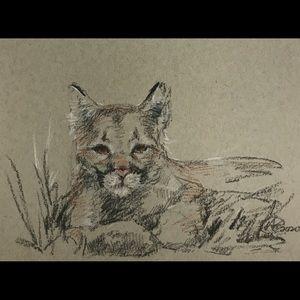 Original painting pastel charcoal cougar cat art